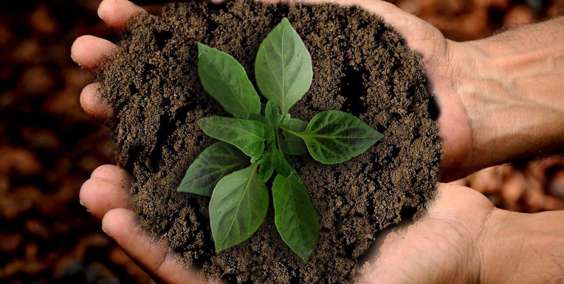 Hållbarhet-i-vardagen-1